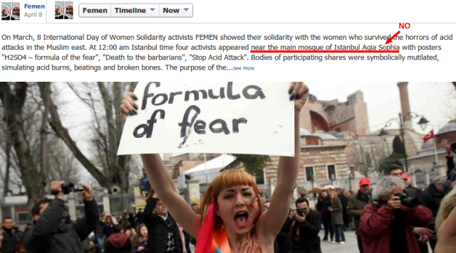 screenshot of FEMEN facebook status showing protester, claiming Hagia Sopia is a mosque